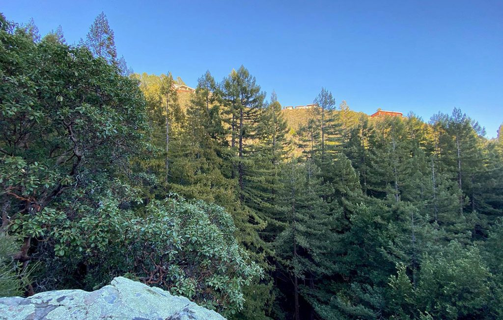 View to ridgeline from property